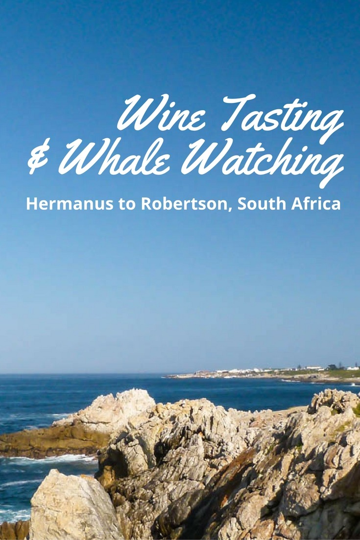 Hermanus to Robertson, South Africa - Wine Tasting & Whale Watching