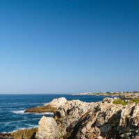hermanus-to-robertson-wine-tasting-whale-watching_