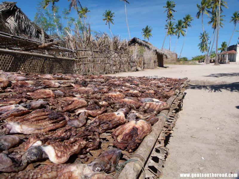 backpacking quirimbas archipelago