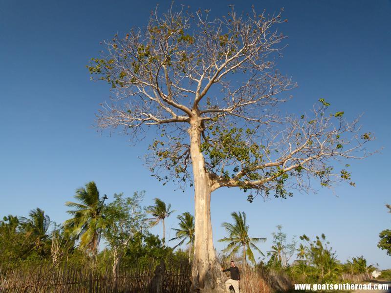 ibo island quirimbas archipelago