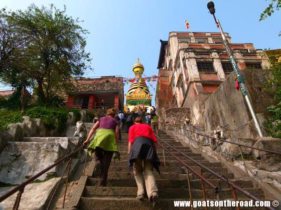 budget backpacker, travel kathmandu nepal, monkey temple