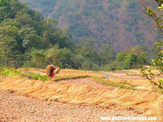 trekking annapurna circuit nepal, budget backpacking