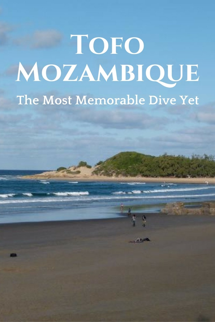 Tofo, Mozambique - The Most Memorable Dive Yet