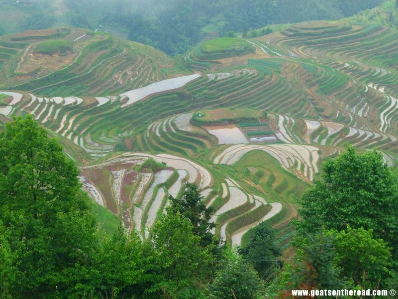 The stunning Dragon's Backbone Rice Terraces, Guilin, China