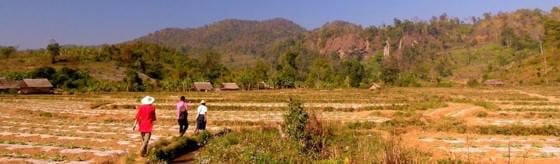 Hsipaw for budget backpackers