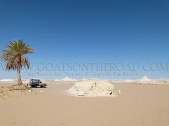 Lunch Break - The White Desert