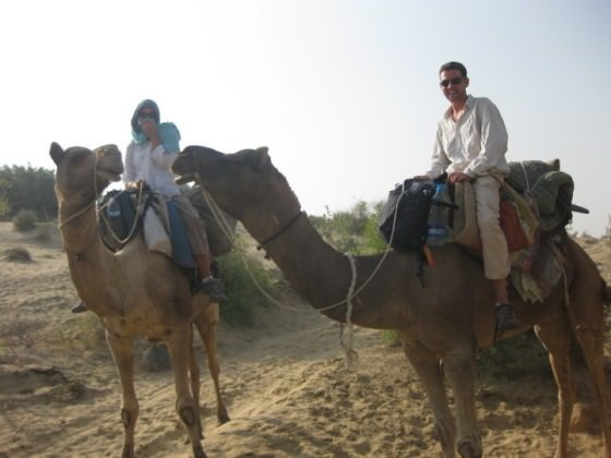 camel safari india