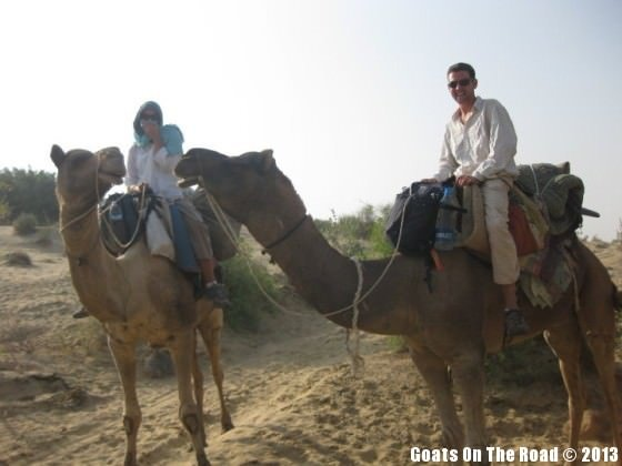 camel safari india
