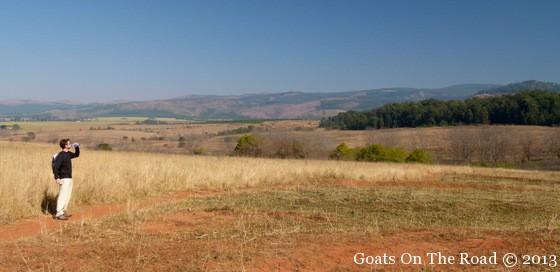 swaziland safari