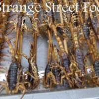 7 Seriously Strange Street Foods In China