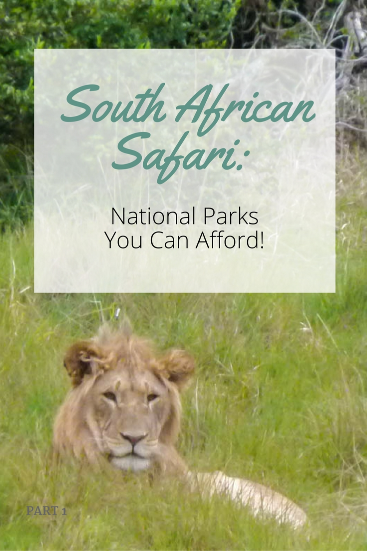 South African Safari: National Parks You Can Afford!