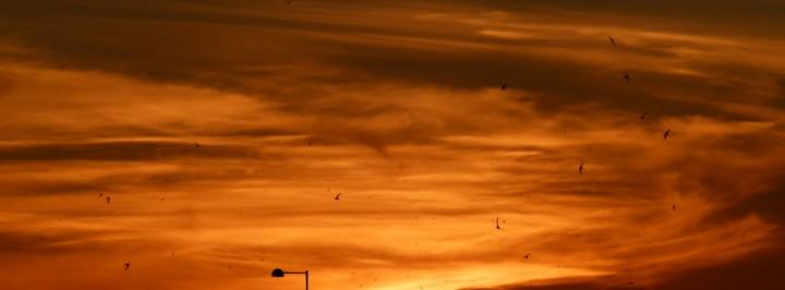 sunset morocco