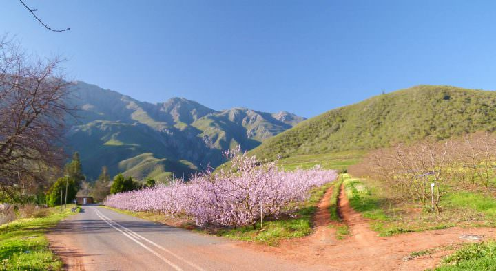 safety tips for a south african road trip