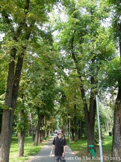 panfilov park almaty