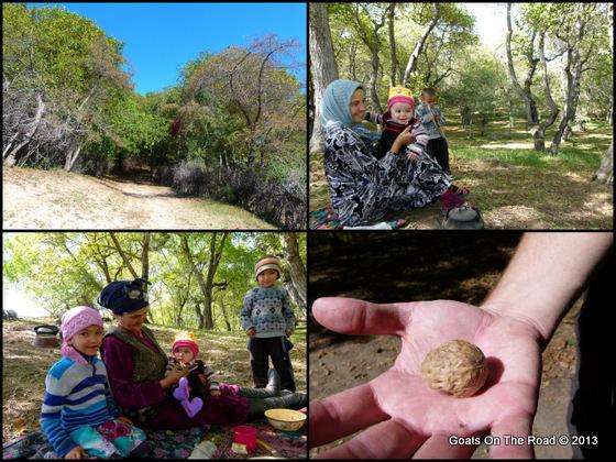 walnut grove kyrgyzstan