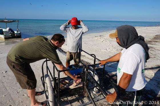 fishermen mexico