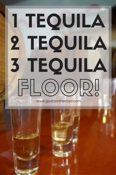 1 tequila 2 tequila 3 tequila floor goats on the road for 1 tequila 2 tequila 3 tequila floor lyrics