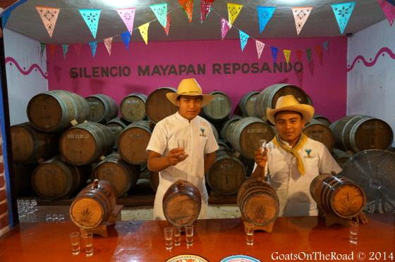 mayapan tequila distillery