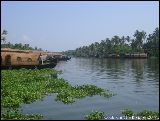 Stylish House Boat In Alleppey
