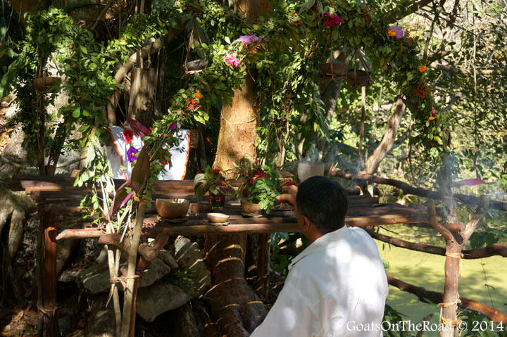 shamanism mexico
