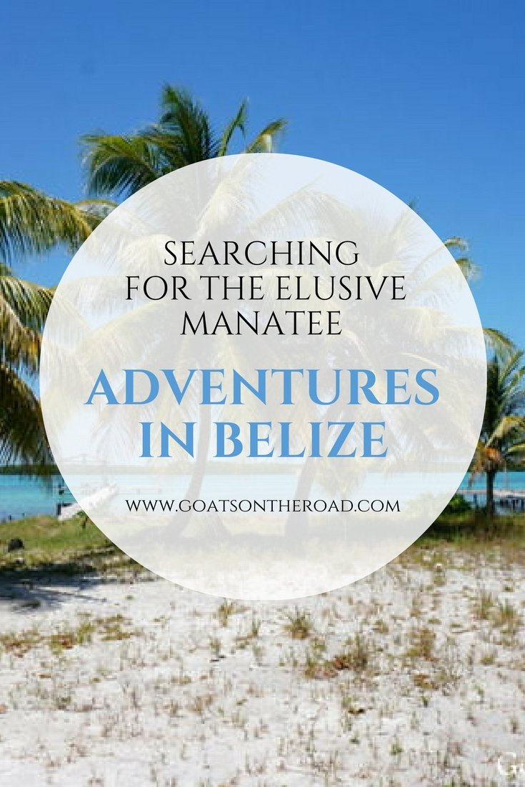 Adventures in Belize – Searching for the Elusive Manatee