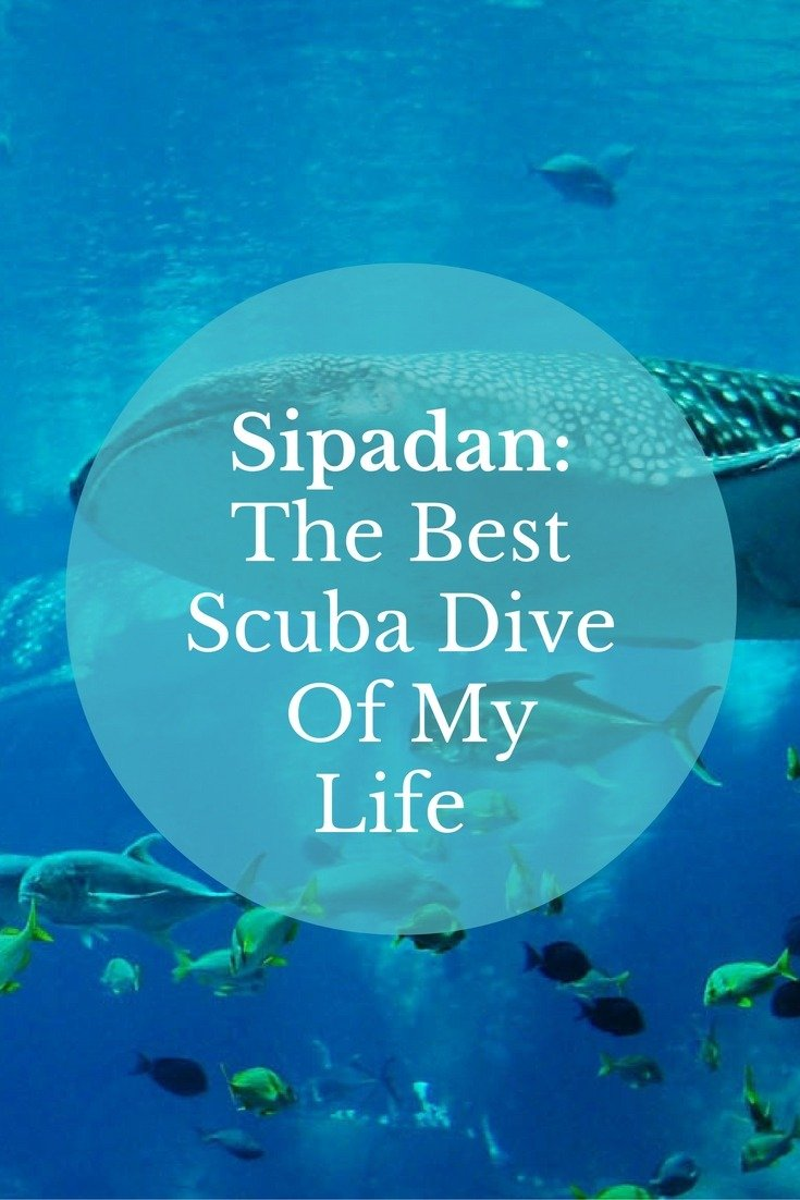 Sipadan: The Best Scuba Dive Of My Life