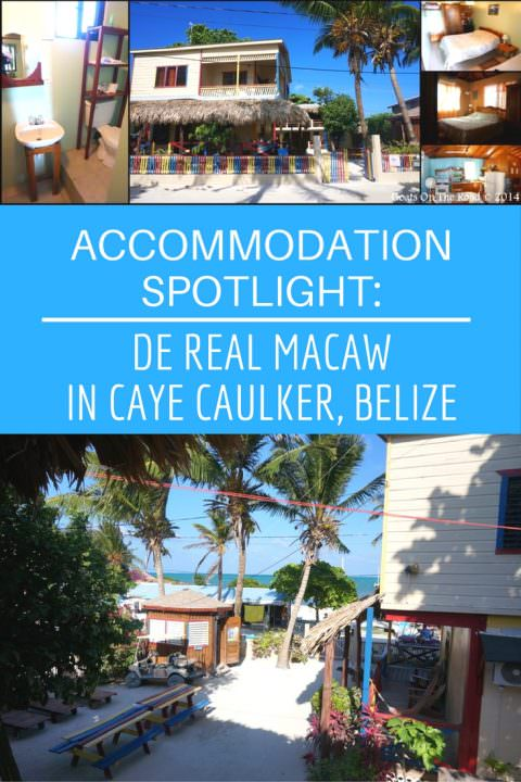 Accommodation Spotlight- De Real Macaw in Caye Caulker, Belize
