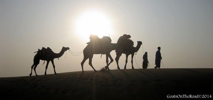 camel safari thar desert