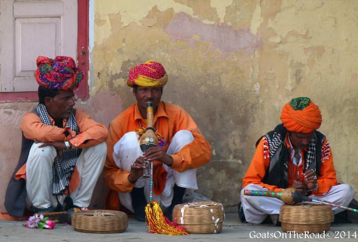 snake charmers jaipur
