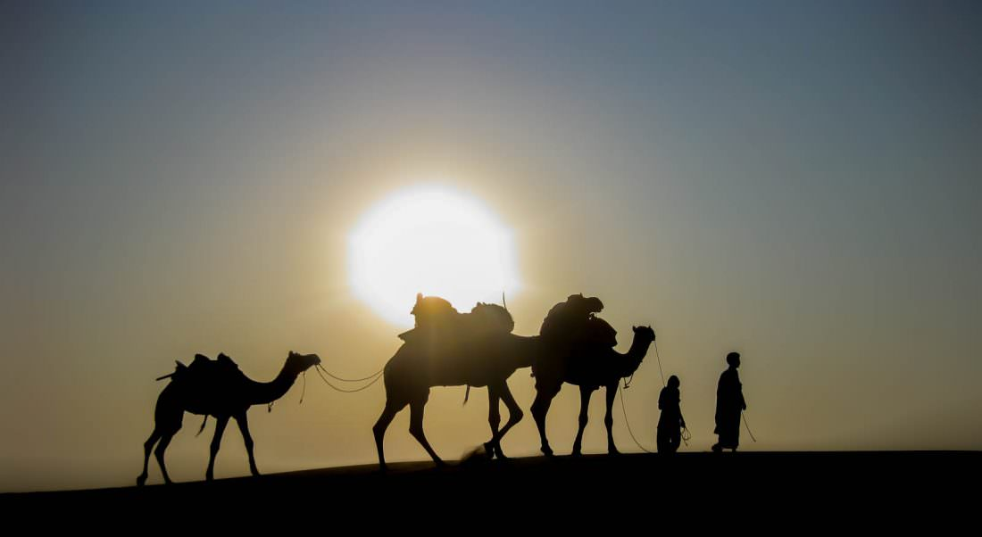 going on a camel safari when backpacking india
