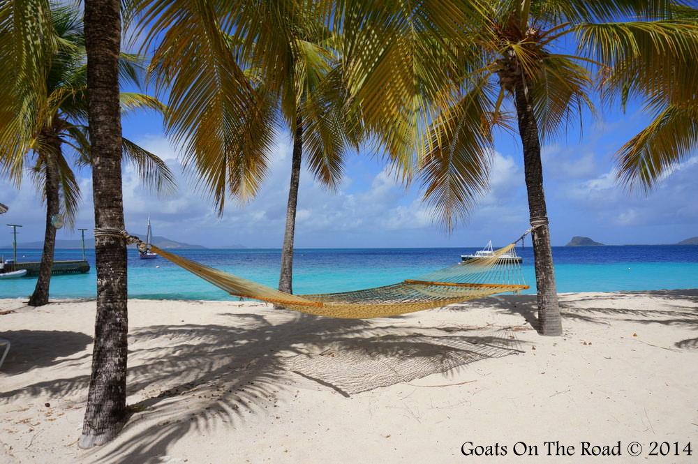 Palm Island Hammock