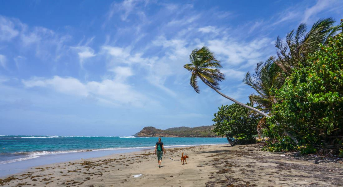 The Cost of Living in Grenada
