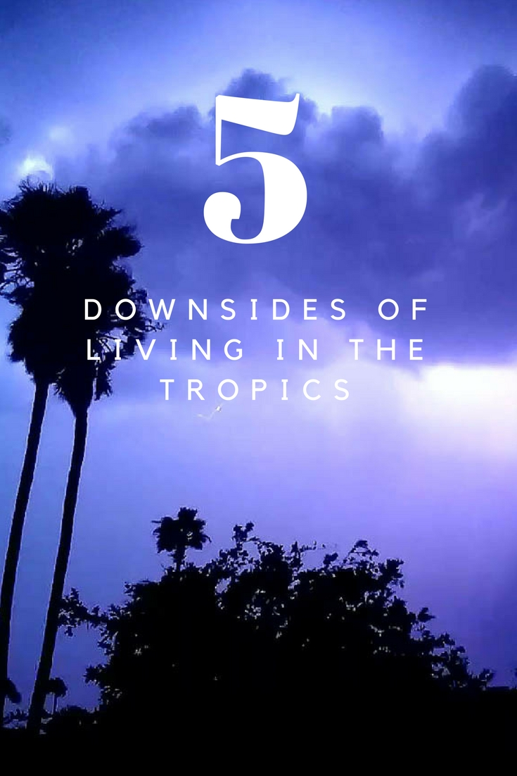 5 Downsides of Living in the Tropics