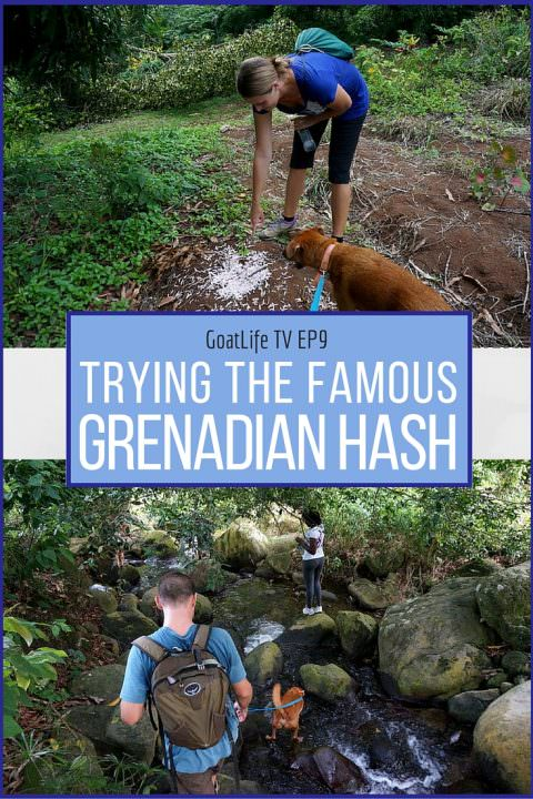 GoatLife TV Episode #9 – Trying The Famous Grenadian Hash