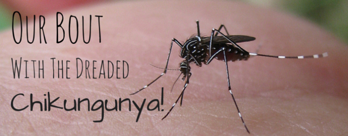 Our Bout With Chikungunya
