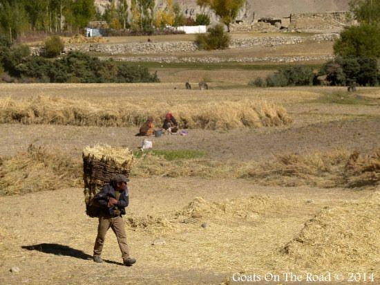 Pamir Highway Farmer