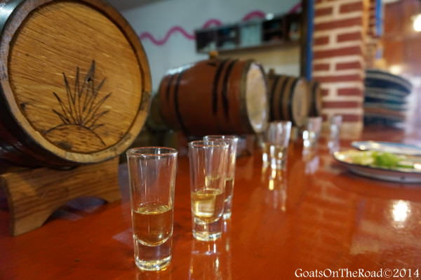 tequila valladolid