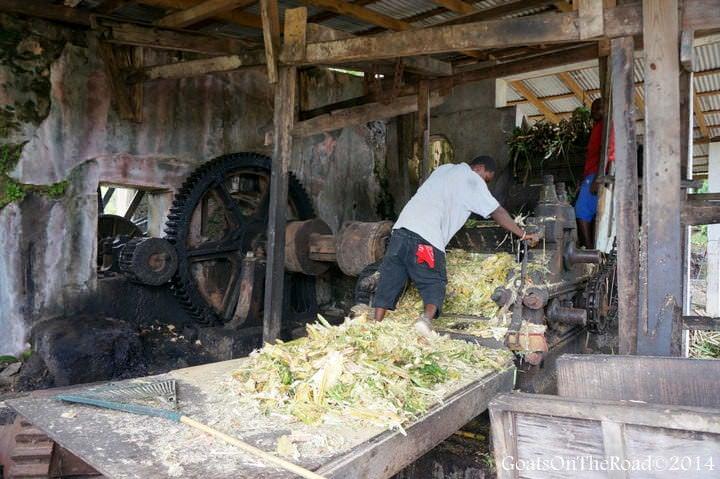 what to do in grenada rum distillery
