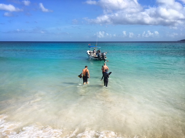 scuba diving in grenada is one of the best things to do