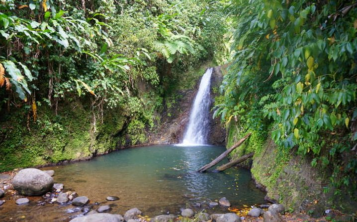 visit grand etang waterfalls in grenada