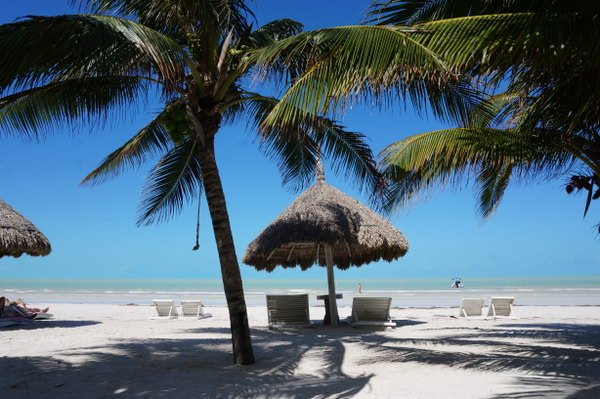 travel to mexico holbox island