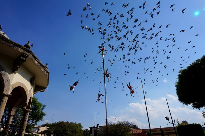 danza de los voladores in guadalajara
