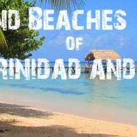 Birds & Beaches of Trinidad & Tobago