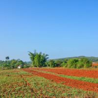 Finding the Real Cuba in Viñales