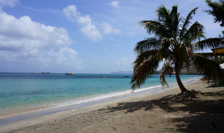 beach in carriacou grenada