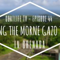 GoatLife TV Episode 44 – Hiking The Morne Gazo Trail in Grenada