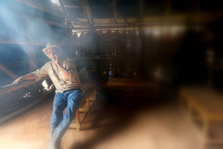tobacco farm vinales