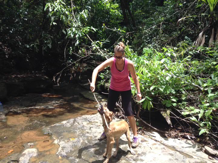 pet sitting in costa rica