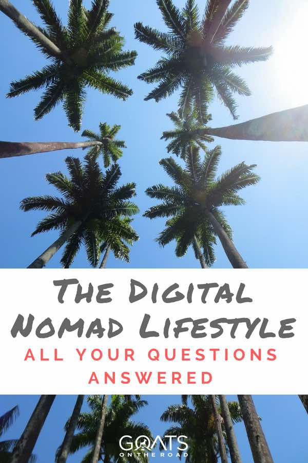 Palm trees and blue sky with text overlay The Digital Nomad Lifestyle