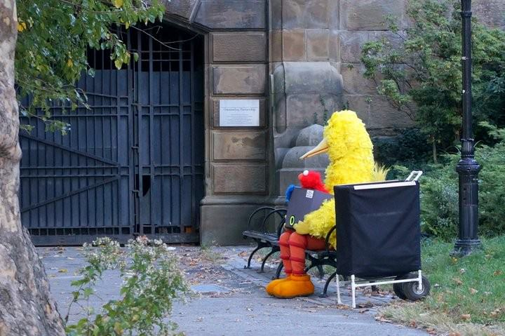 Big Bird Chillin' In Central Park